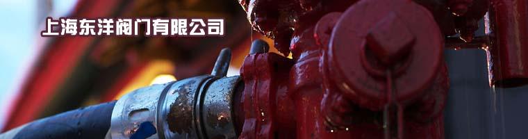 上海东洋阀门有限公司