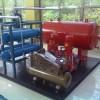 DLC0.8/25-15气体顶压应急消防给水设备北京厂家直销