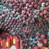 供应充装维修灭火器,灭火器厂家质量最好,3kg灭火器维修检测