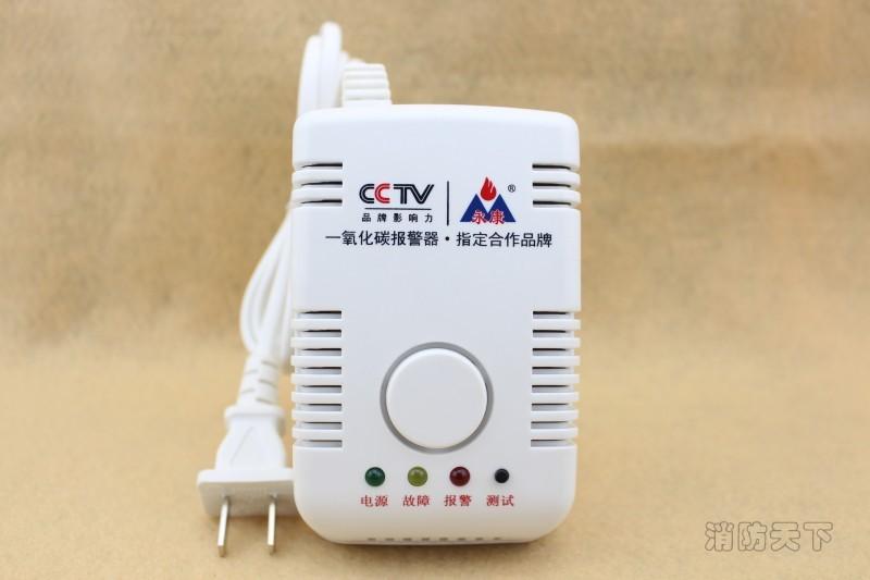 壁挂式一氧化碳报警器 (2)