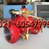 以色列DOROT电磁阀/G100电磁阀