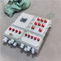 一鼎防爆BXMD系列防爆照明动力配电箱