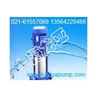 销售25LG2-18×2工业滤水泵